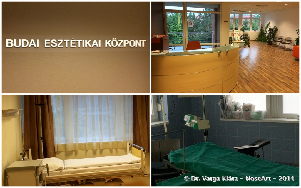 1-20141005_2 Dr Varga Klara NoseArt orrplasztika
